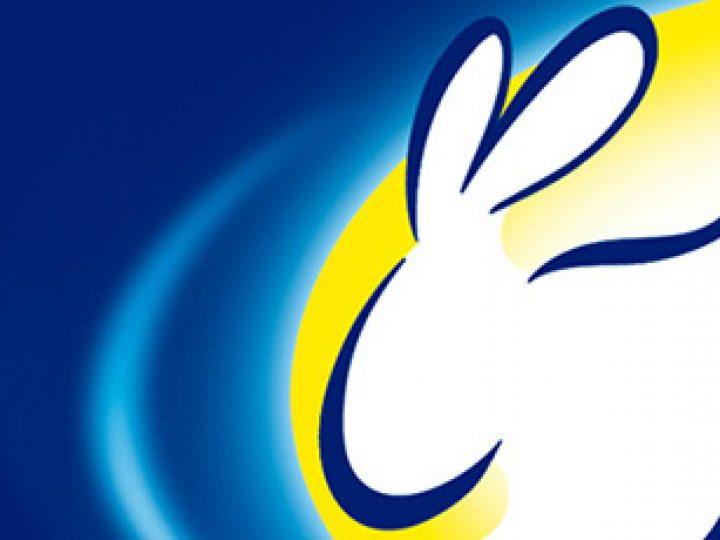 Lejía Conejo